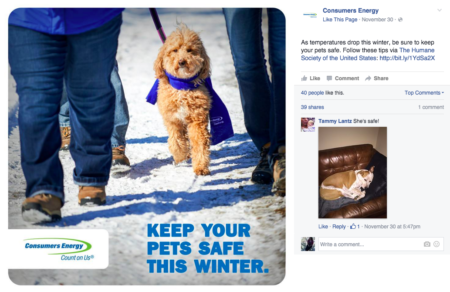 Consumers Energy Facebook post keep pets safe